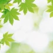 横琴人寿【优康保】可以吗?有优点和缺点吗?没有买的价值。全面分析。